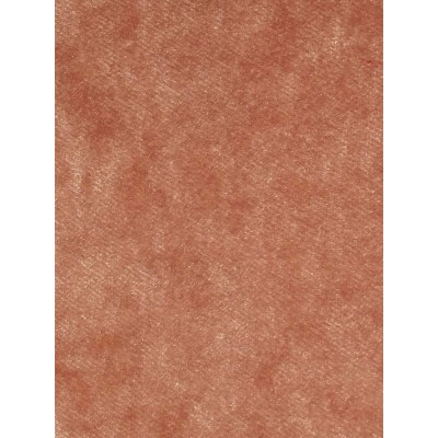 Pastiche Crush Plain Coral